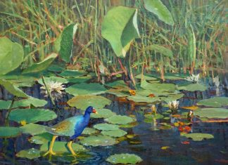 Andrew Andy Peters Treading Lightly bird pond lily pads lake western landscape oil painting wildlife