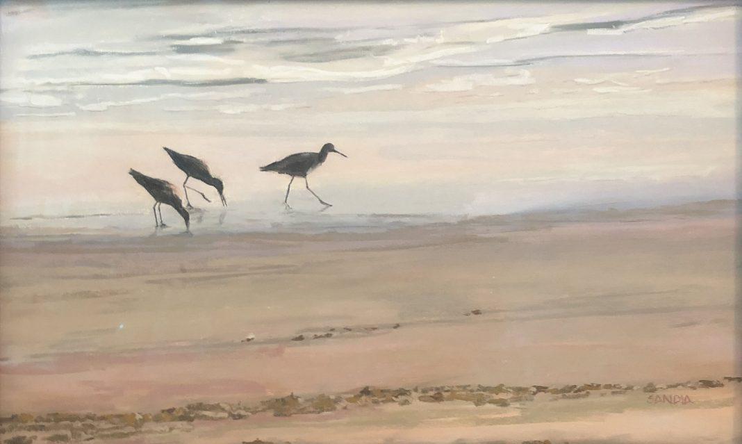 Elizabeth Sandia Sandpipers original pastel painting wildlife birds beach ocean surf sea
