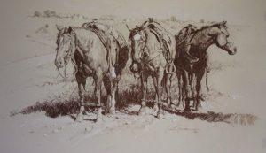 bruce greene cowboy cadillacs drawing horses western painting