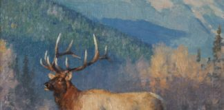 tucker smith distant bugle elk landscape wildlife oil painting