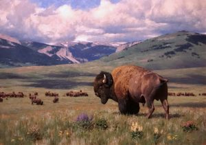 tucker smith return of summer buffalo bison mountains clouds landscape wildlife oil painting prix de west award winner