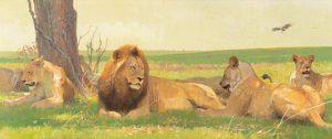 bob kuhn after the short rains lion lioness wildlife landscape acrylic painting