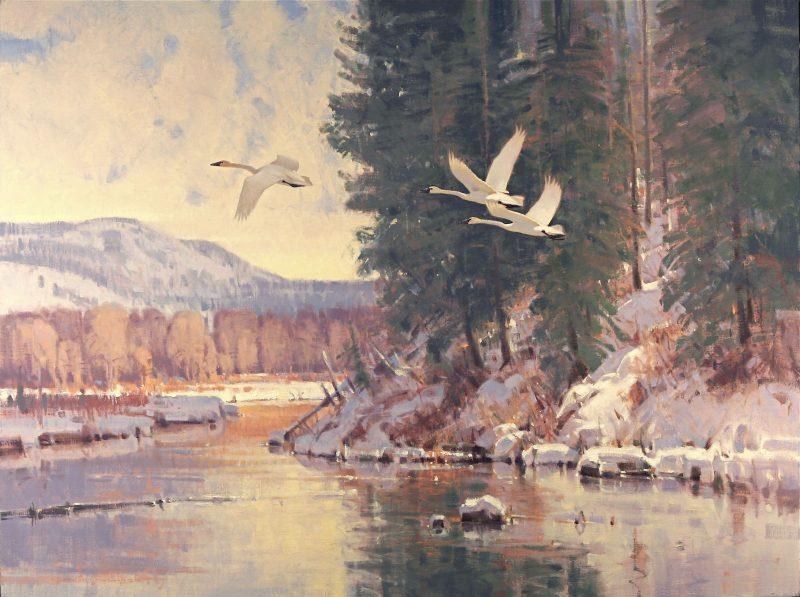 Jim Morgan A Time To Leave swan lake mountain river snow lake wildlife oil painting
