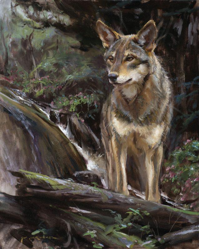 Daniel Gerhartz Wolf wildlife oil painting