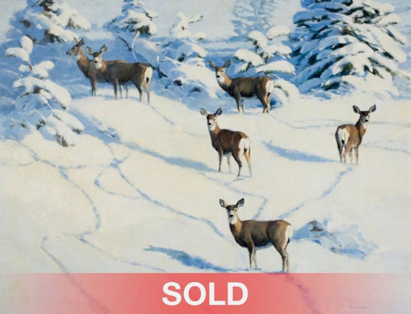 Stephen Elliott Afternoon Shadows mule deer snow mountains western landscape wildlife oil painting