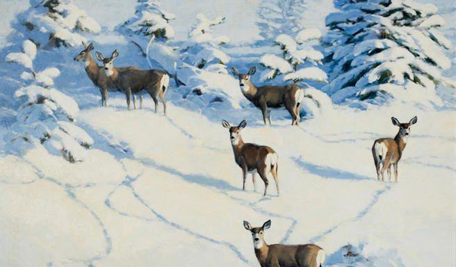 stephen elliott afternoon shadows deer whitetail snow wilderness landscape oil painting