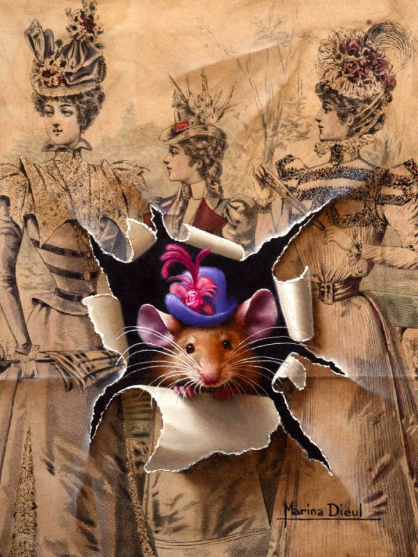 Marina Dieul A La Mode mouse mice trompe l'oeil realist realistic wildlife oil painting