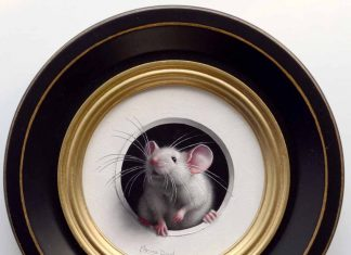 Marina Dieul Petite Souris 481 mouse mice wildlife oil painting