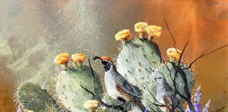 Trevor Swanson Pair Among Flowers oil on copper quail prickly pear cacti cactus wildlife oil painting
