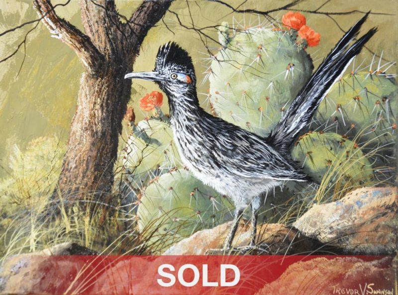 Trevor Swanson Sir Speedy roadrunner bird wildlife oil painting Sold