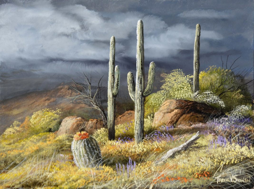 Trevor Swanson Storm From The Catalinas saguaro cactus cacti desert clouds Arizona Tucson oil painting