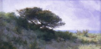 David Riedel Coastal Pine western landscape oil painting