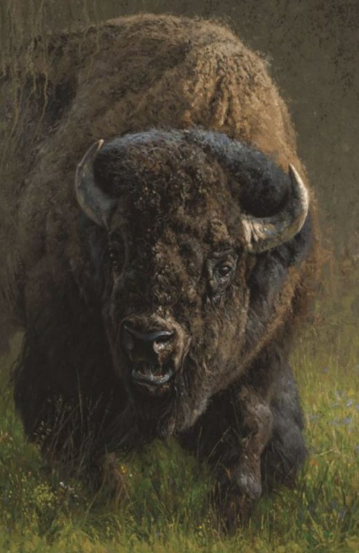 "Greg Beecham ""August Rumblings"" buffalo bison wildlife oil painting western"