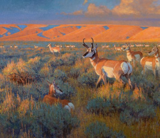 "Ralph Oberg ""Prairie Sundown"" pronghorn sunset wildlife oil painting"