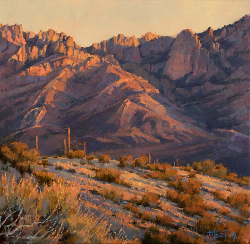 "Darcie Peet ""Catalina Rose"" desert mountain western landscape oil painting Tucson Arizona"