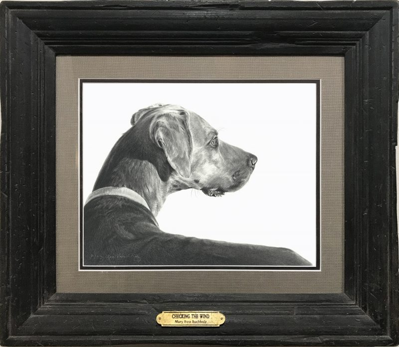 Mary Ross Buchholz Checking The Wind dog pencil drawing western painting framed