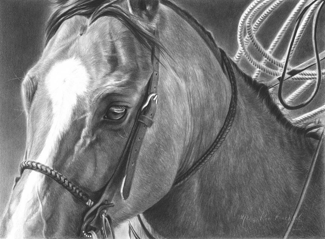Mary Ross Buchholz Good Boy charcoal graphite drawing horse portrait western painting