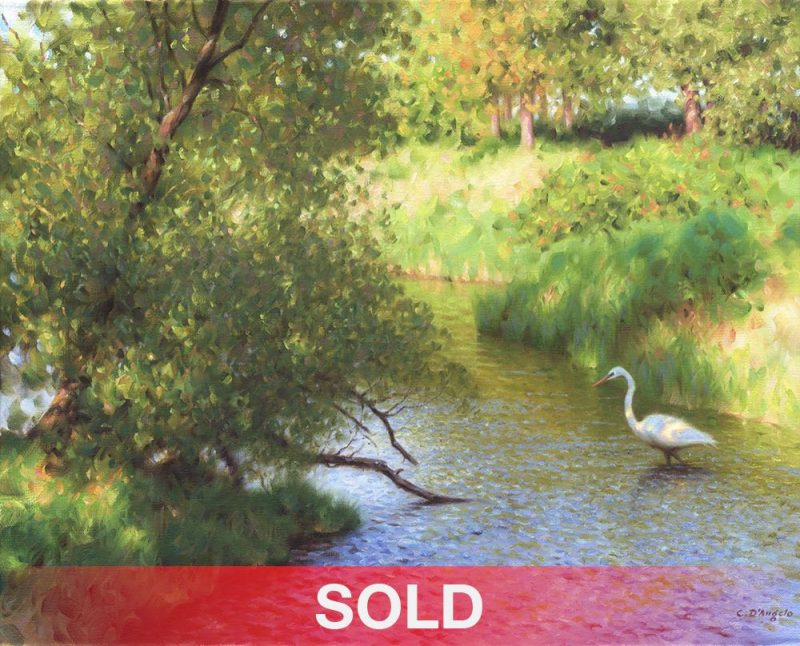 Claudio D'Angelo Southern Visitor bird river stream water wildlife oil painting