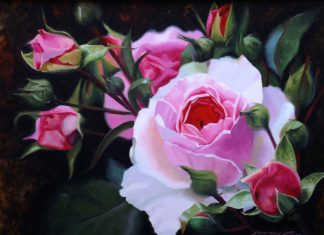 John Cox Garden Roses floral flowers still life oil painting