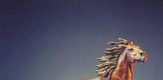 Ken Payne Lord Of The Purple Sage horse mustang western bronze sculpture