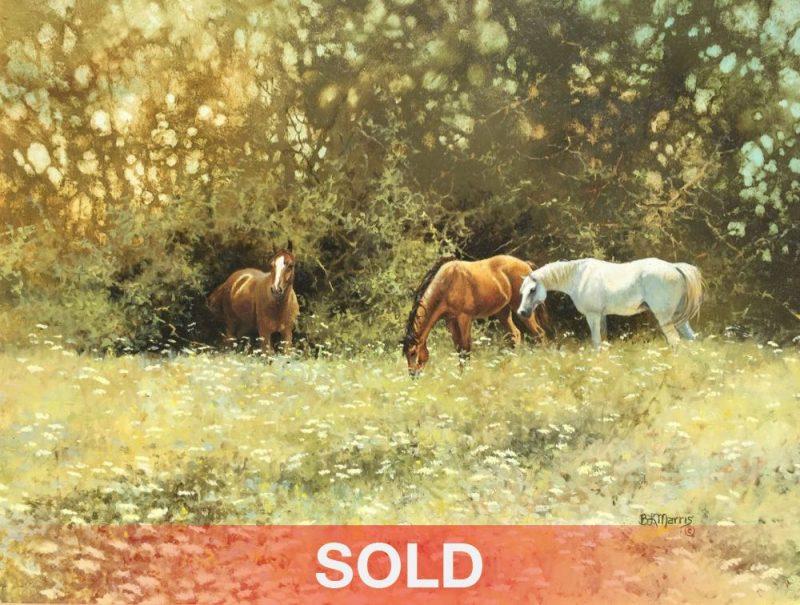 Bonnie Marris Queen Anne's Lace horses grazing equine pasture wildlife oil painting