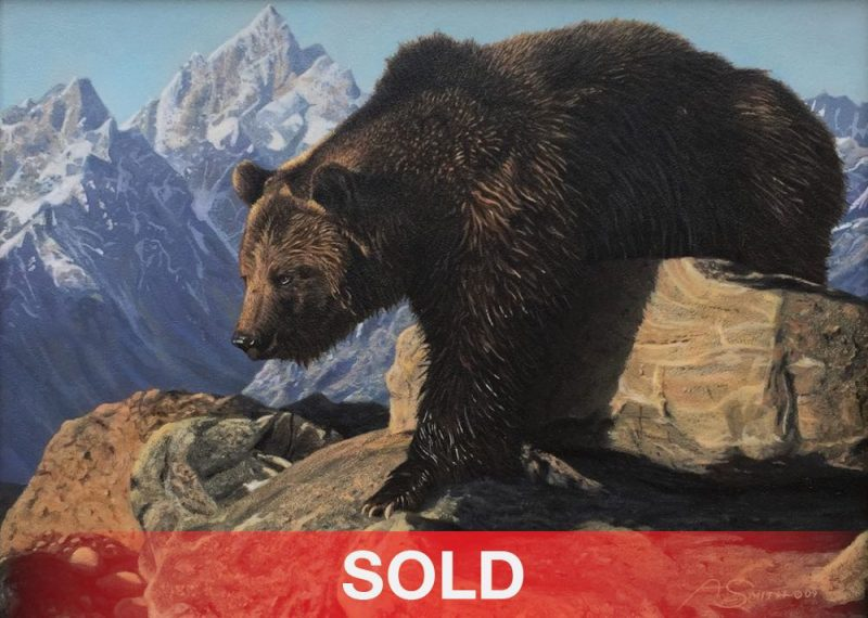 Adam Smith The Bear Climbed Over The Mountain grizzly wildlife acrylic painting sold