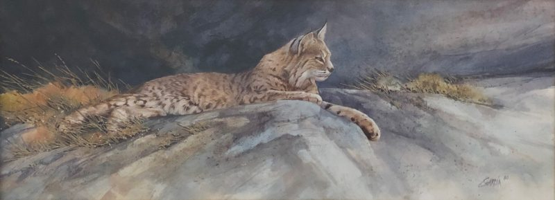 Joe Garcia Lazy Days watercolor cat lynx bobcat wildlife painting