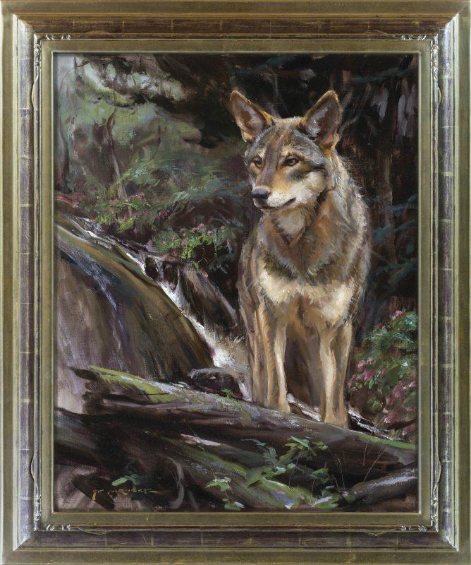Daniel Gerhartz Wolf wildlife oil painting framed