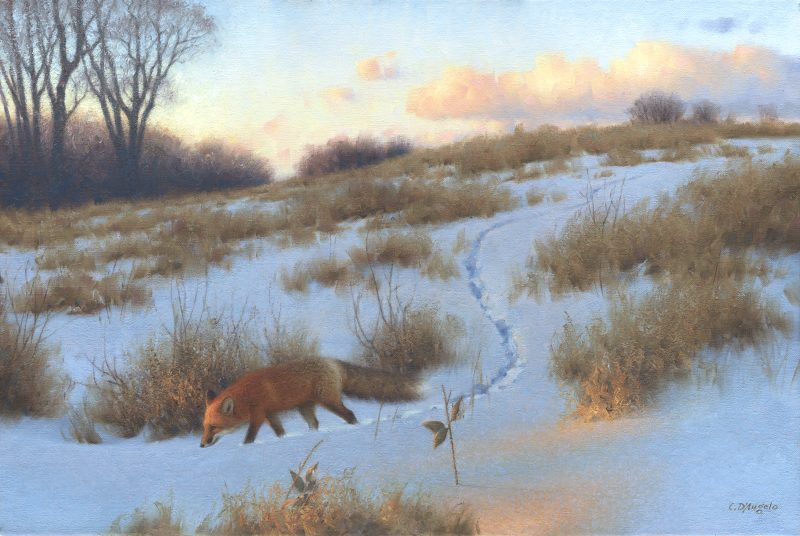 Claudio D'Angelo The Evening Rounds red fox wildlife oil painting snow sunset